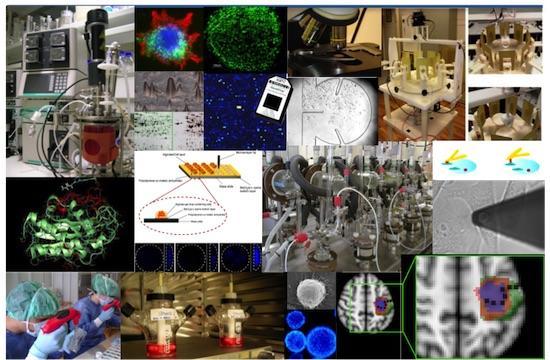Descrição · Mestrado Integrado em Engenharia Biomédica