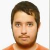 Alexandre Duarte de Almeida Lemos (ist173316)