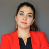 Elmira Yadollahi
